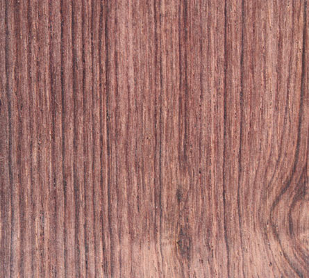 palissandre de rio le bois de palissandre de rio luthier paris dsc guitars basses. Black Bedroom Furniture Sets. Home Design Ideas